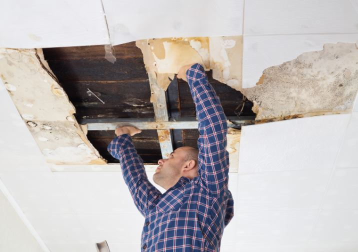 REASONS TO HIRE WATER RESTORATION PROFESSIONALS RATHER THAN DIY